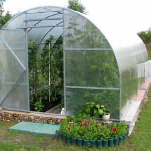 Warzywa z własnego ogrodu